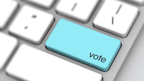 Silver Lake One of Few For Online Voting
