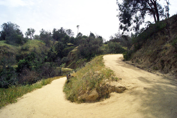 DAY TREKKING_PHOTO 2_WEST ELYSIAN PARK DRIVE TRAIL