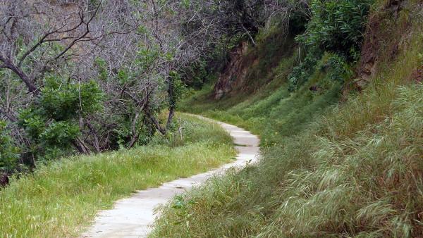 Day Trekking: Elysian Park Hiking Trails