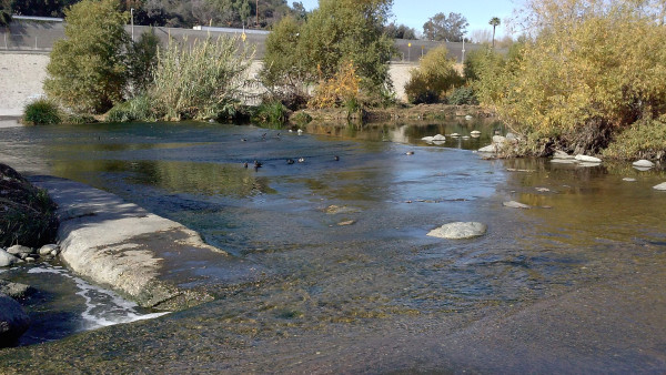 Blocked River Pathways to Reopen