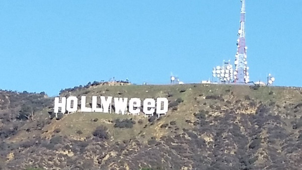 """Hollyweed"" No Joke To Authorities"