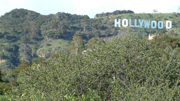 Lawsuit Filed to Open Beachwood Gate to Hollywood Sign