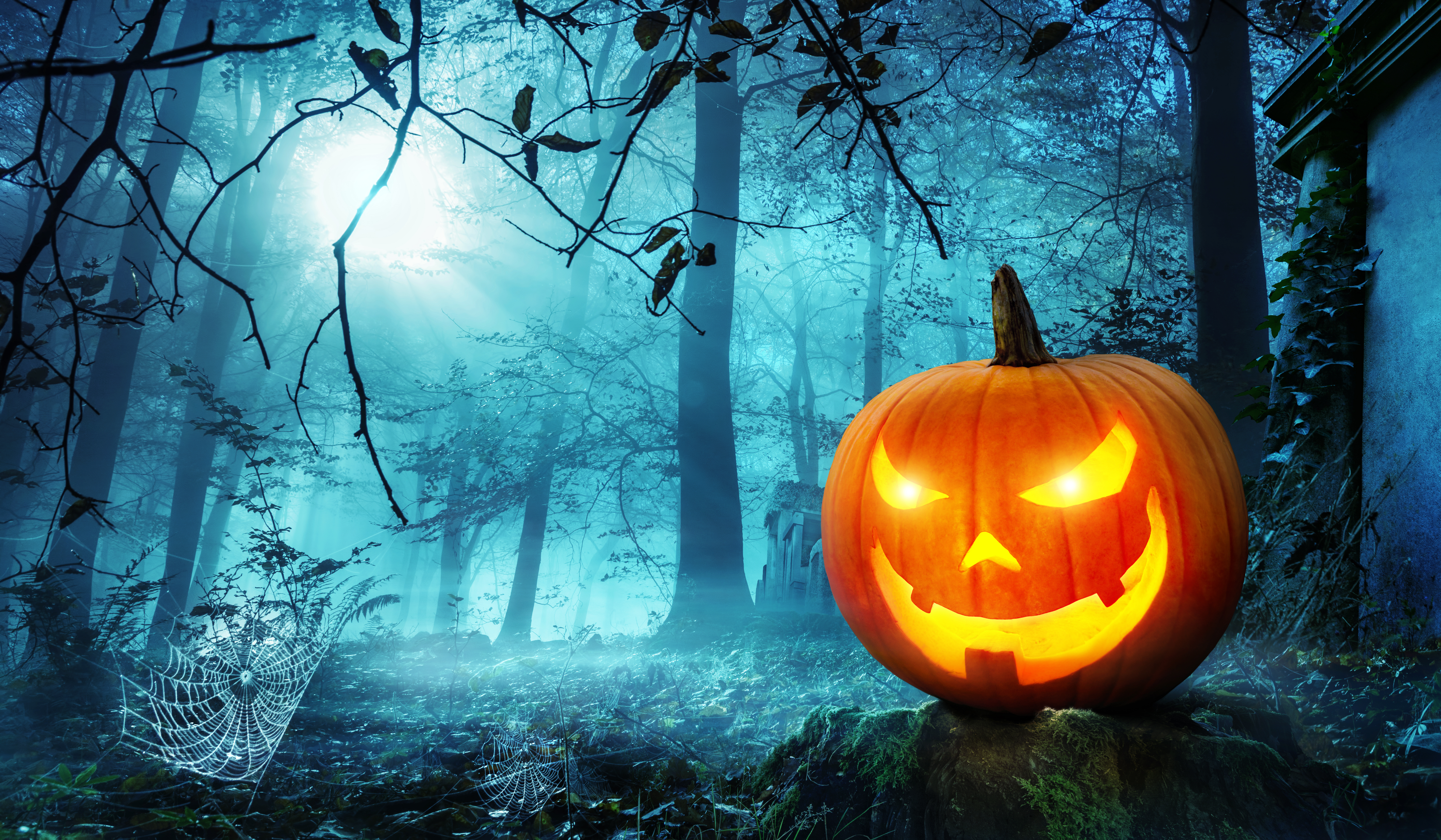 send halloween greetings to a child in need los feliz ledger